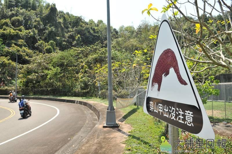 為防範遭到穿山甲遭到車輛碾壓,暨大設置告示牌提醒師生車速放緩避免意外。(柏原祥 攝)