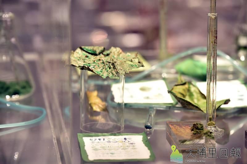 澳洲當代裝置藝術家珍奈特•勞倫絲作品《花間》局部。(柏原祥 攝)